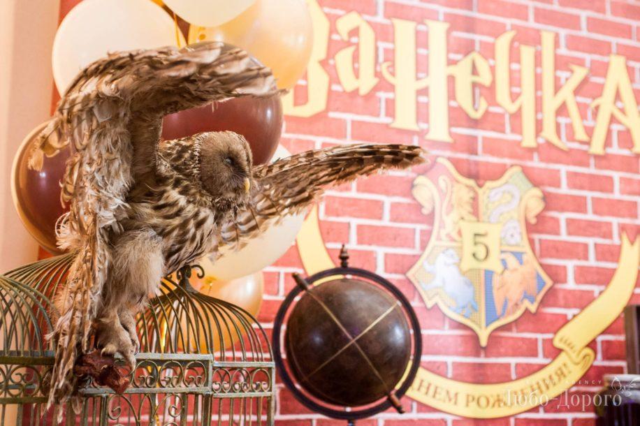 День рождения в стиле «Harry Potter» - фото 9>
