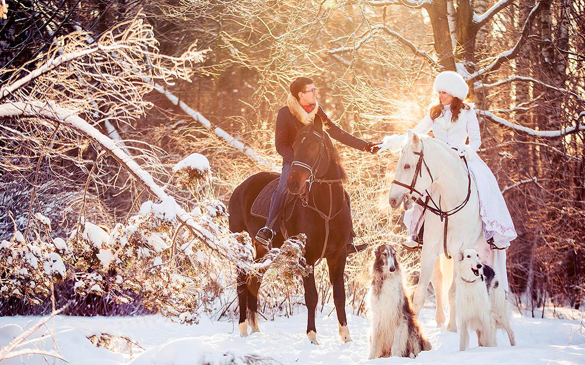 Зимний Свадебный Кортеж